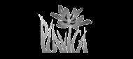 plavica_logo